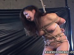Extreme Asian rope bondage and BDSM